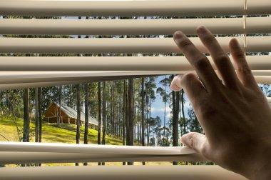 beautiful scene through window blinds