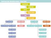 Vállalat: szervezeti felépítés