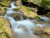 creek veloce e cascata tra le pietre