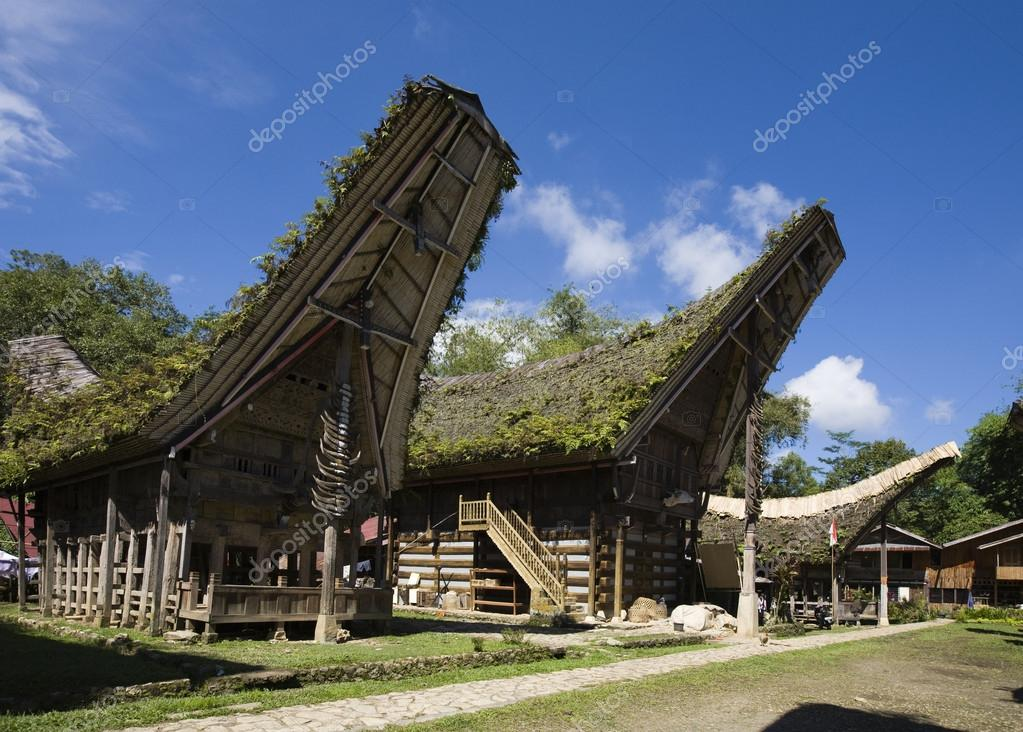 Toraja house roofs in a row, Sulawesi, Indonesia