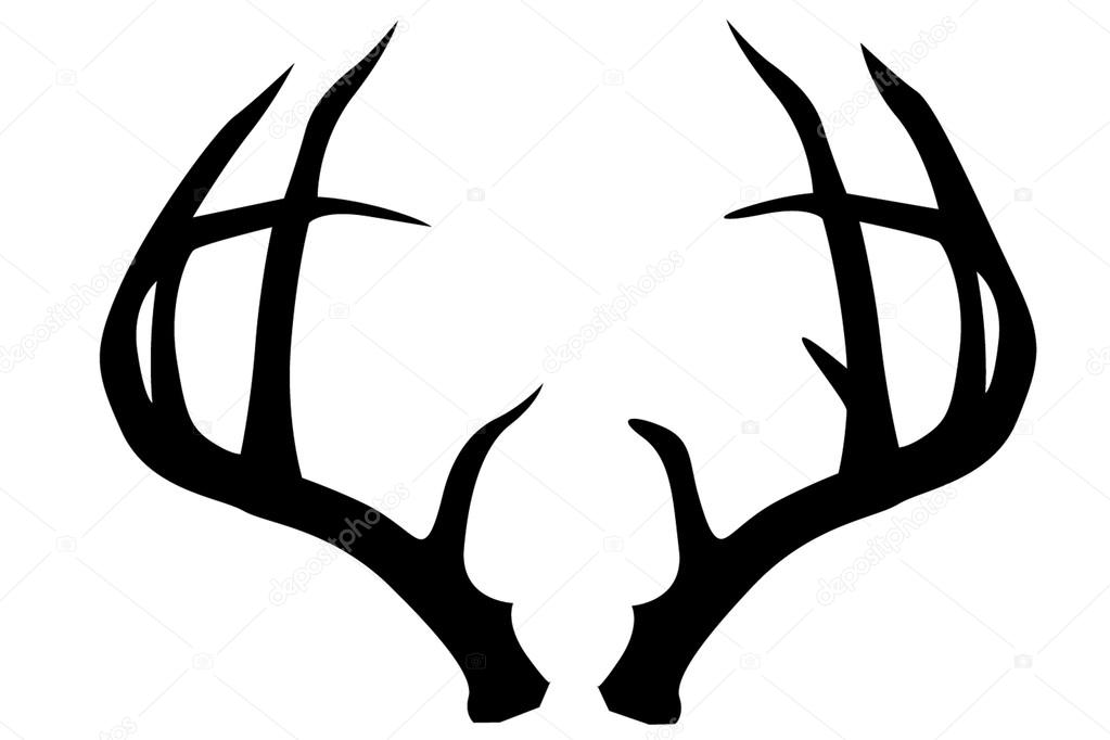 deer antlers stock vector johndesign7483 19099509 rh depositphotos com deer antler vector images free deer antler vector images