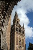 Fotografie La Giralda, Sevilla