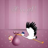 Čáp s holčička pro novorozence