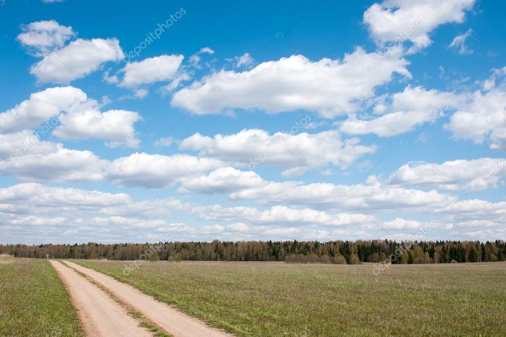 Фотообои Вид на поле