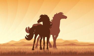 Horses in field on sunset background vector silhouette illustrat