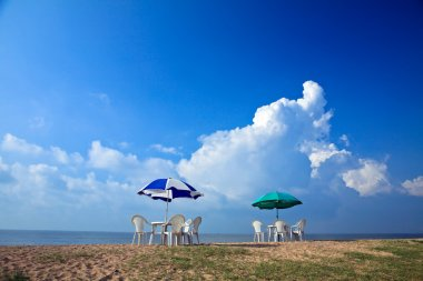 Parasols at the beach