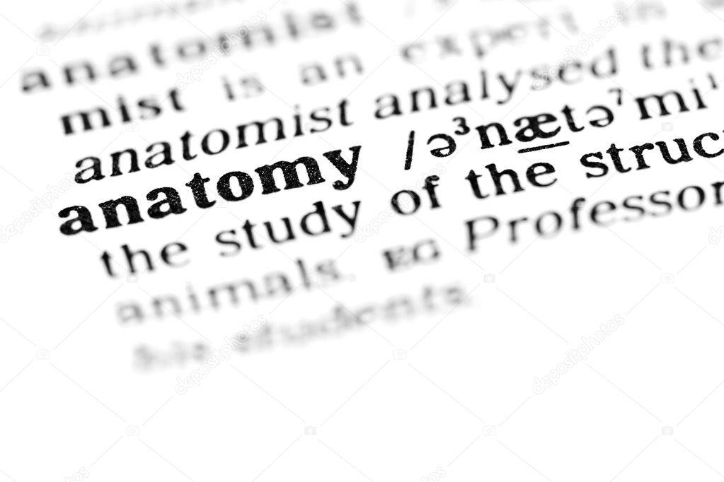 Anatomy Word Dictionary Stock Photo Lambroskazan 19643797