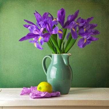 Beautiful still life with iris flower over grunge background