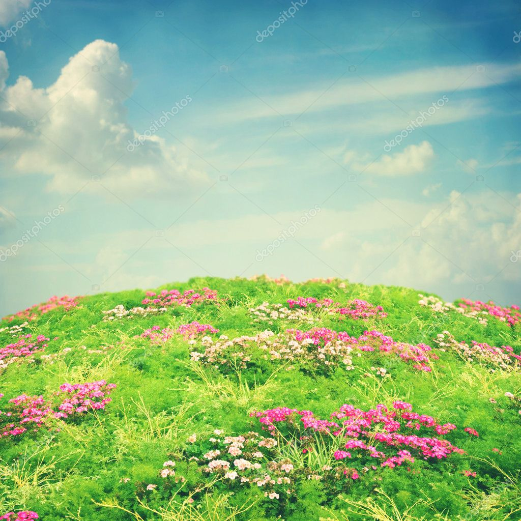 Nature background with flowers