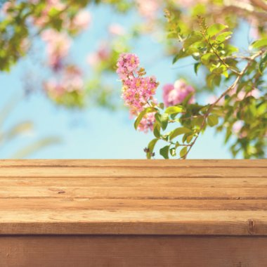 Spring background with wooden deck