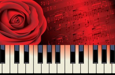 red rose and piano melody