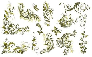 Vintage olive design elements