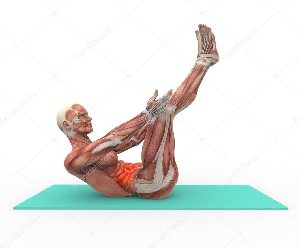 Anatomía y abdominal — Fotos de Stock © Giovanni_Cancemi #21385281