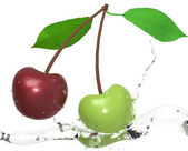 třešně s vodními tryskami