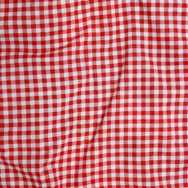 Red and white checkered picnic blanke