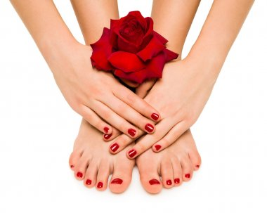 Beautiful manicure and pedicure with a rose