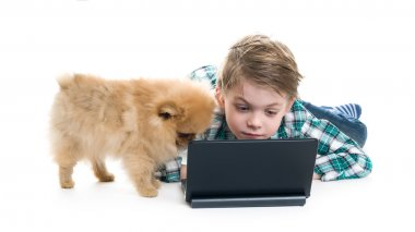 Boy with laptop and dog isolated on white background