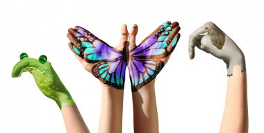 Child hands painted in colorful paints or tattoo with frog, butterfly, elephant.