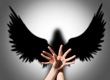 Hands shadow like wings