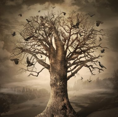 Magic Tree with Crows
