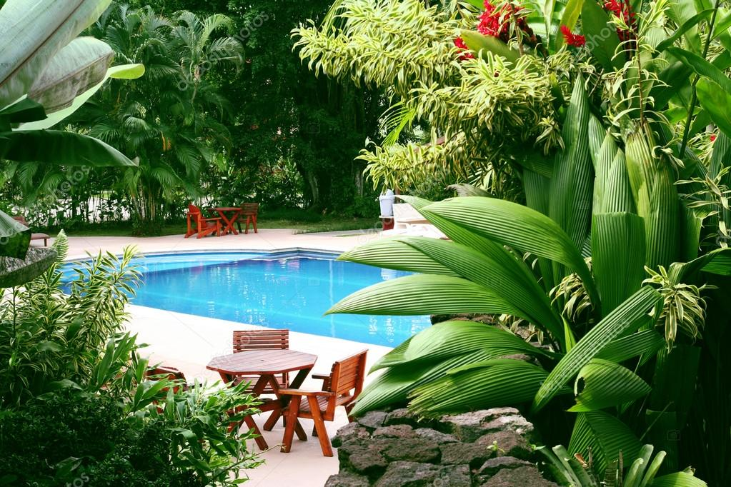 Pool in tropical setting