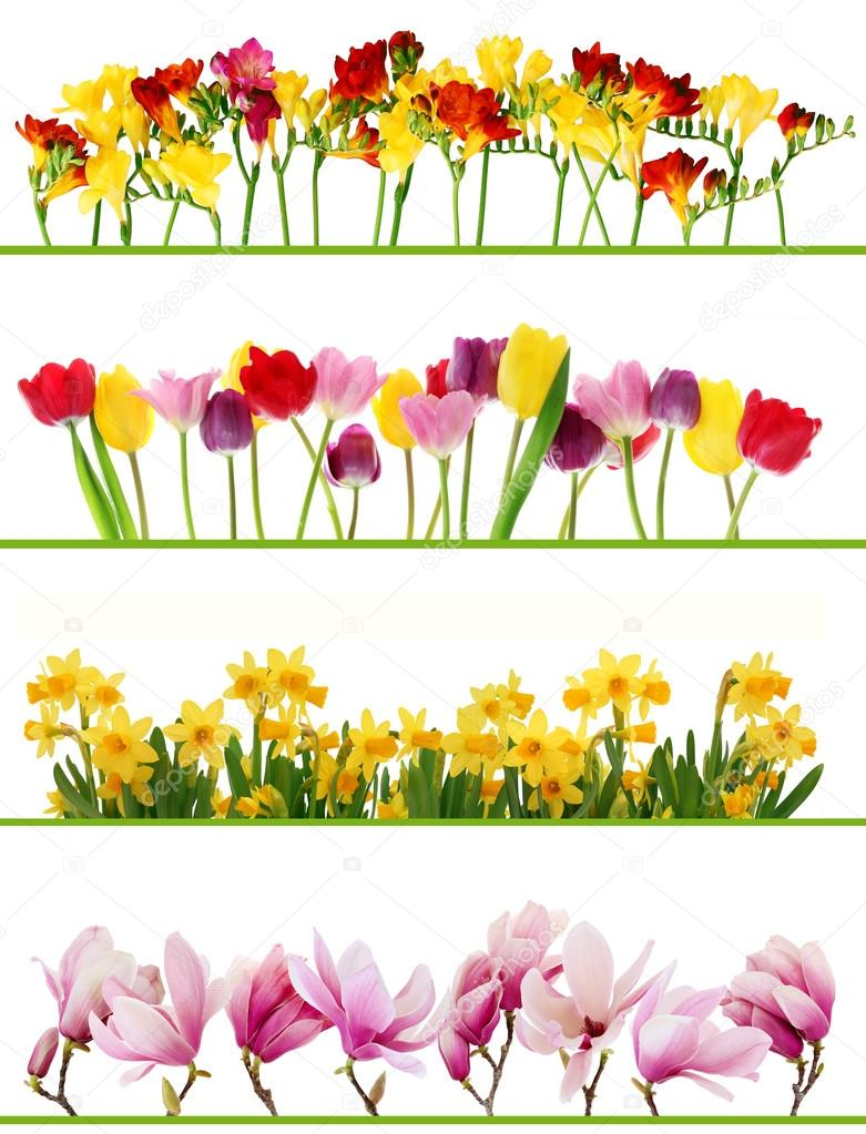 Spring Flower Borders Stock Photo Beatabecla 19397621