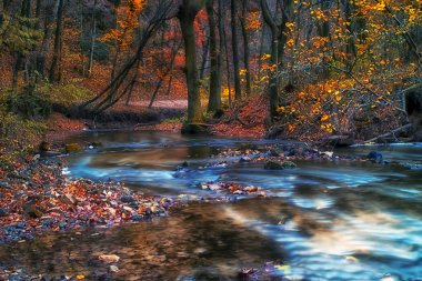 Beautiful river in the forest at winter