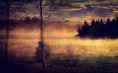 Fotografia paesaggio con lago e autunno foresta