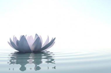 """Картина, постер, плакат, фотообои """"zen цветок лото в воде """", артикул 19416303"""