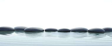 Zen stones in water on widescreen with white background stock vector
