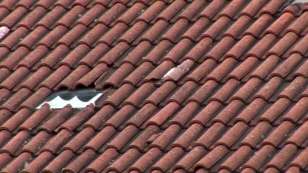 pomalé pan doprava - střecha s červeným břidlice
