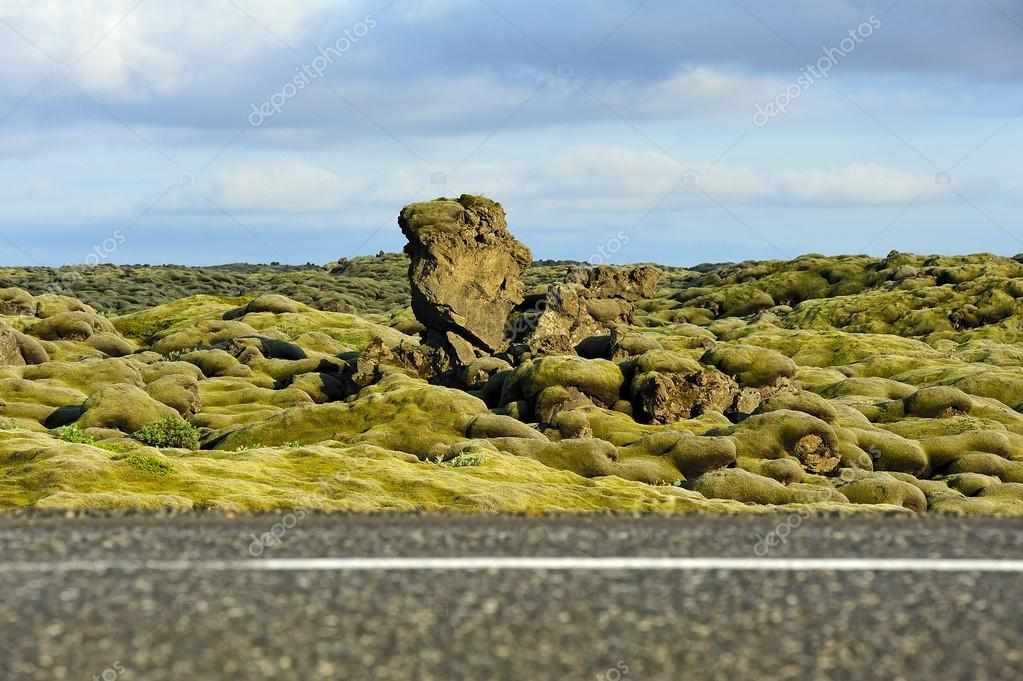 road crossing a lava field overgrown with mosses