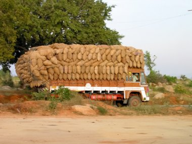 Indian Rice Transport