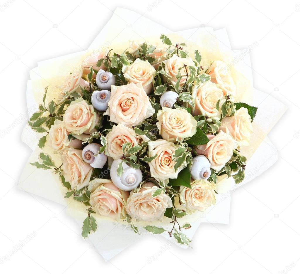 Floral compositions with cream colored roses and seashells. The isolated image on a white background. Pink roses and shell.
