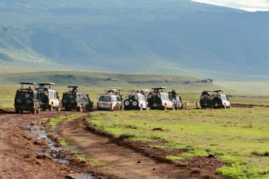 The set jeeps with tourists flocked near group wild lions.