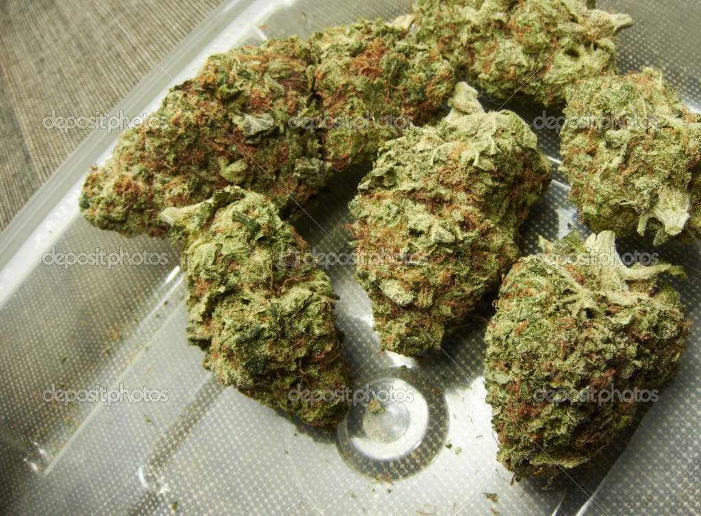 Нейролептики с марихуаной легализации марихуаны в россии