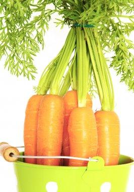 carrots in a bucket