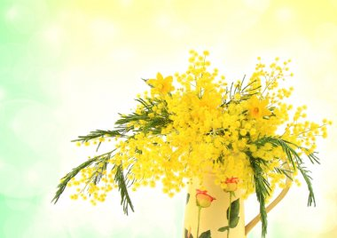 Mimosa and yellow daffodils