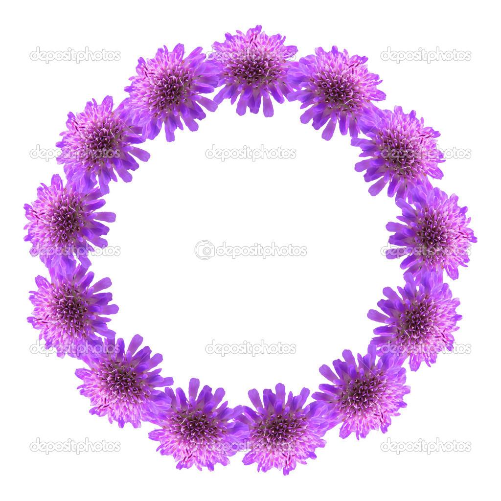 marco de círculo de flores de color púrpura — Fotos de Stock ...