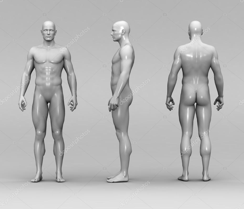 anatomía humana masculina — Fotos de Stock © newartgraphics #19874135
