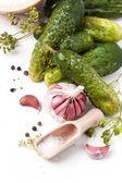Photo Pickled cucumber