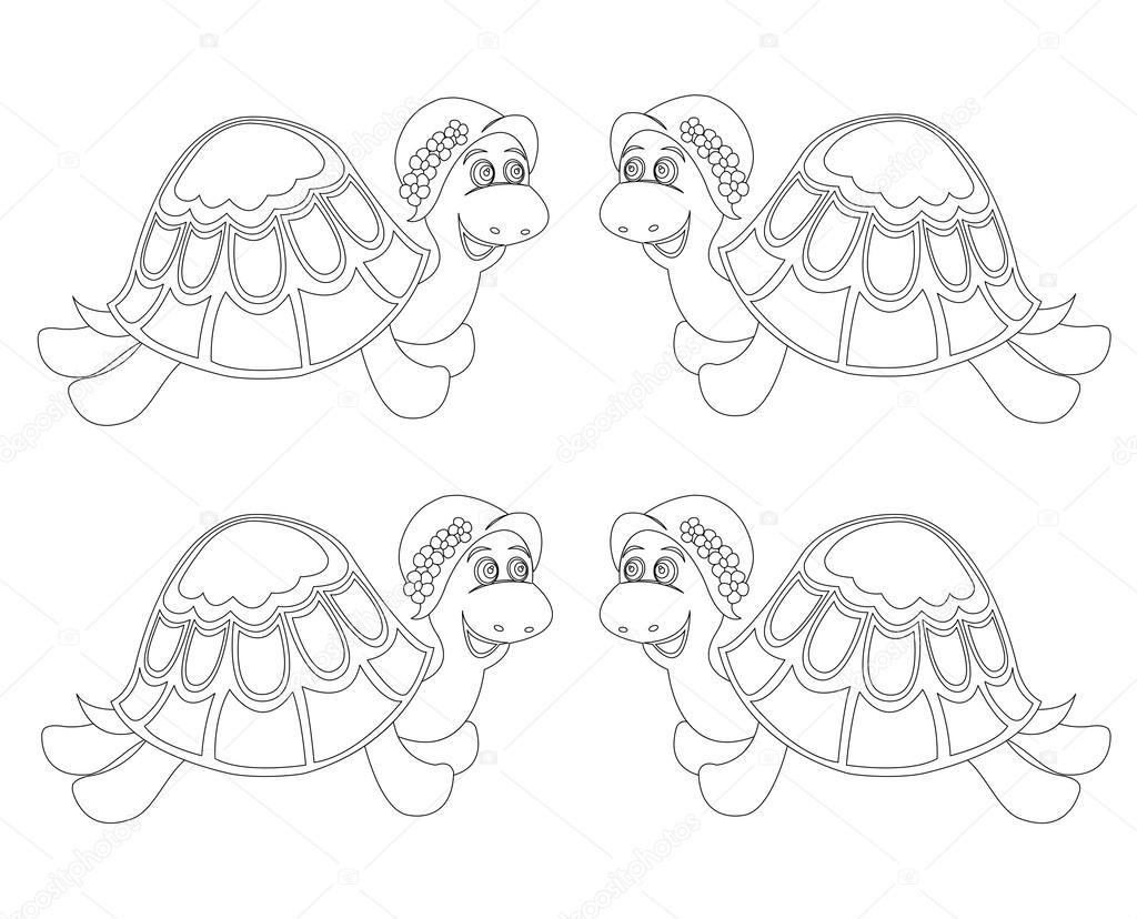 Schildkröten — Stockvektor © From11 #45735685
