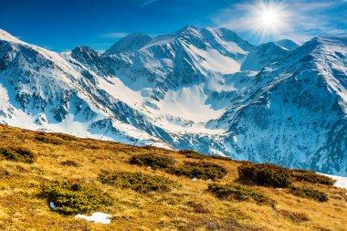 Spring landscape on a sunny day in the Fagaras mountains,Carpathians,Romania