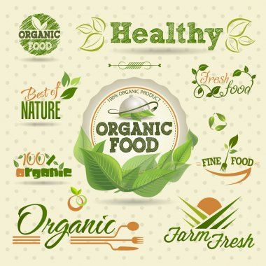 Set of Fresh Organic vector Labels and Elements stock vector