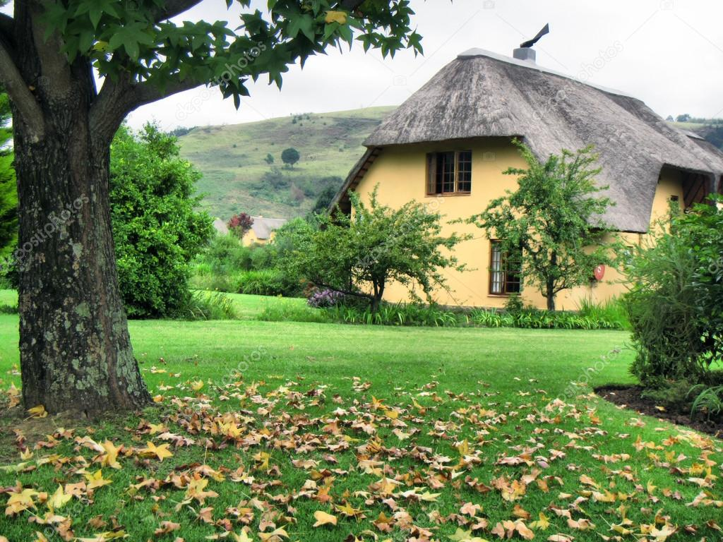 Autumn tree and vacation house in Drakensberg