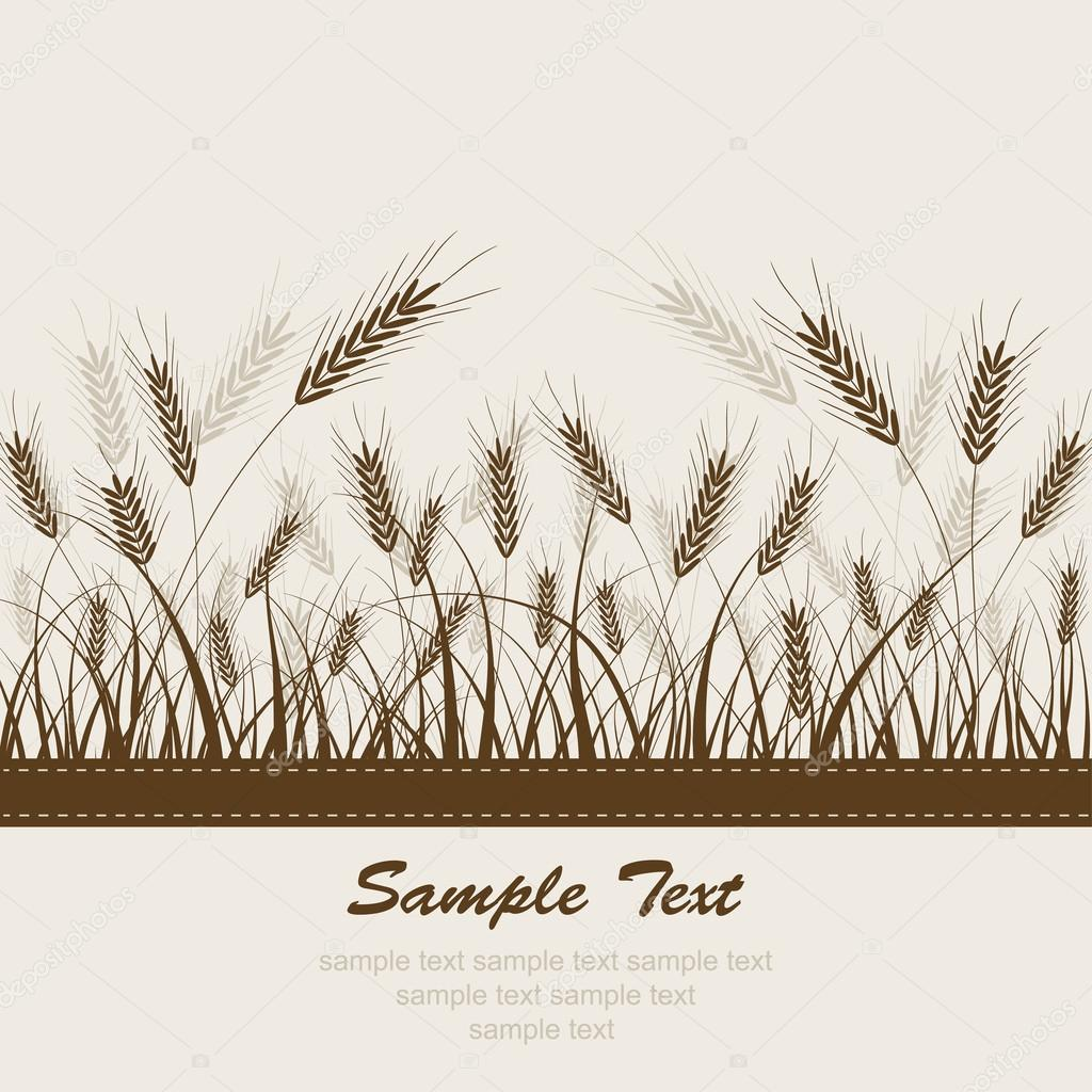 Abstract wheat background, vector