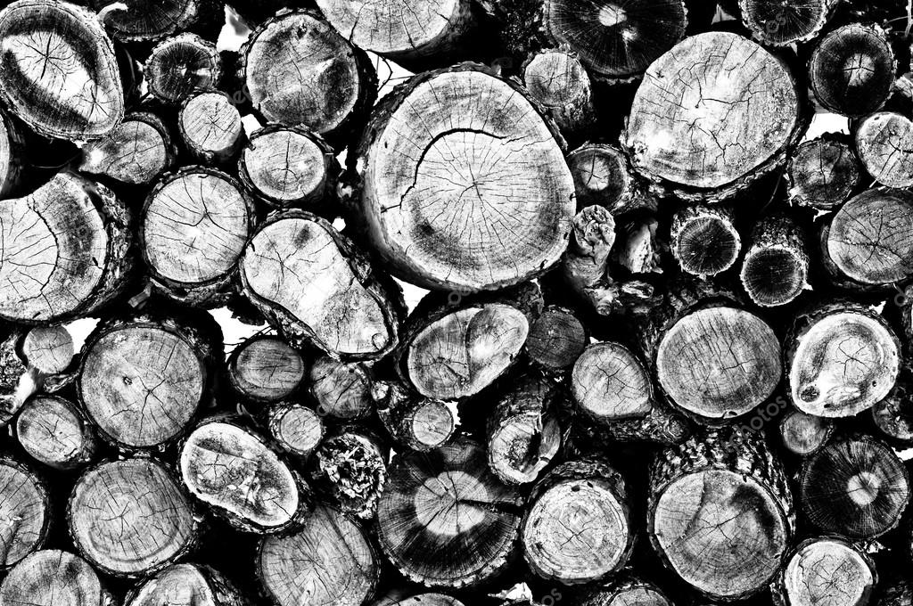 Firewood black and white background
