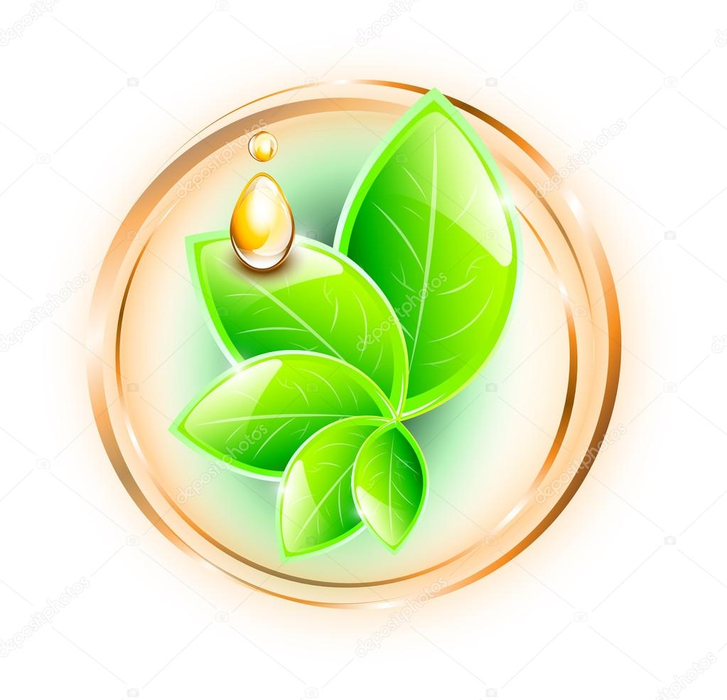 Green plant with oil drops