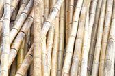 Fotografie natürlichen bambus hintergrund