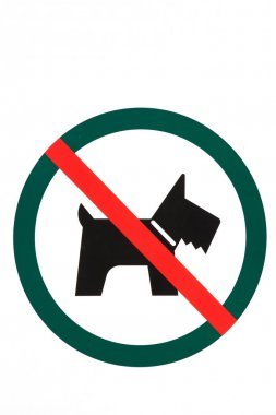 No dogs or pets